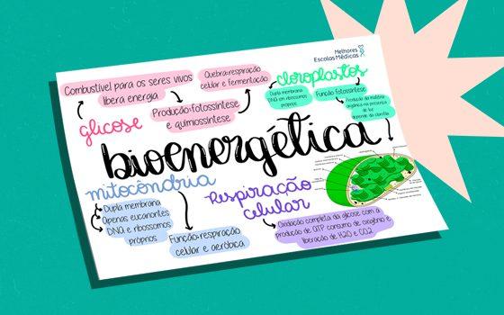 Mapa mental 2 (bioenergética)