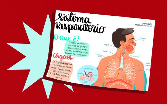 Resumo 4 (Sistema Respiratório)